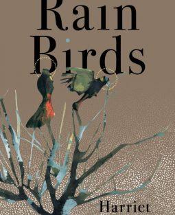 Rain Birds Cover