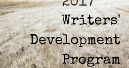 Writers' Development Program